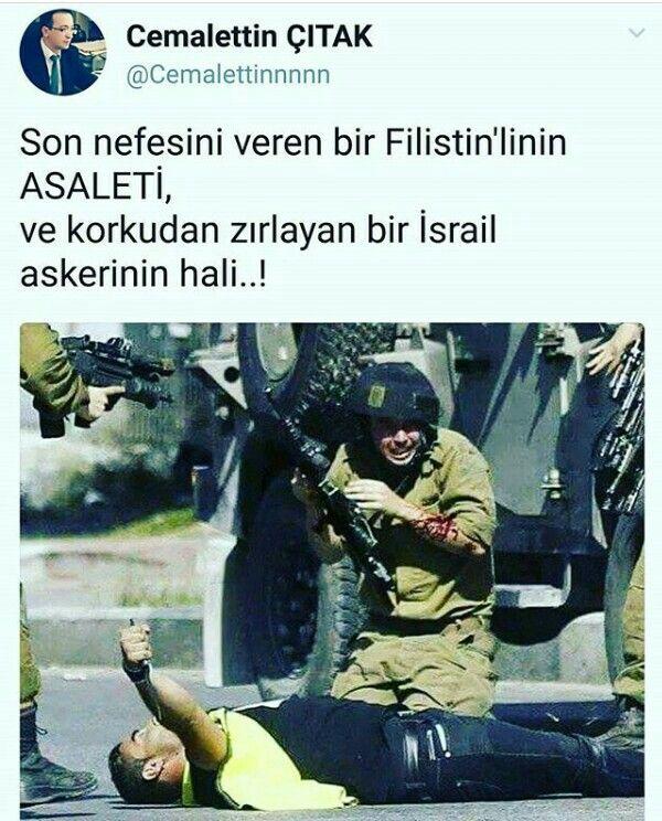#Terroristİsrael #Filistin #Palestine #FreeQuds #KudüsİçinAyağaKalk #KudüsİçinBeyazıttayız #Türkiye #İstanbul #Beyazıt #BeyazıtCamii #İslam #din #müslüman #freequds #EzzedeenAlQassamBrigades #İzzettinElKassamTugayları #KassamTugayları #Asker #Soldier #polis #jöh #pöh #özelharekat #sondakika #güncel #cuma #cumanamazı #medya #cnn #bbc #abd #ab #aurope #amerika #almanya #dünya #cia #chanell #israel #terrorist #soldiers #mücahid #cihad #savaş #çocuk #children #youtube #instagram #twitter…
