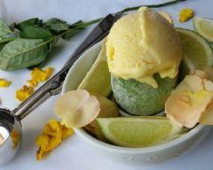 glace citron verveine