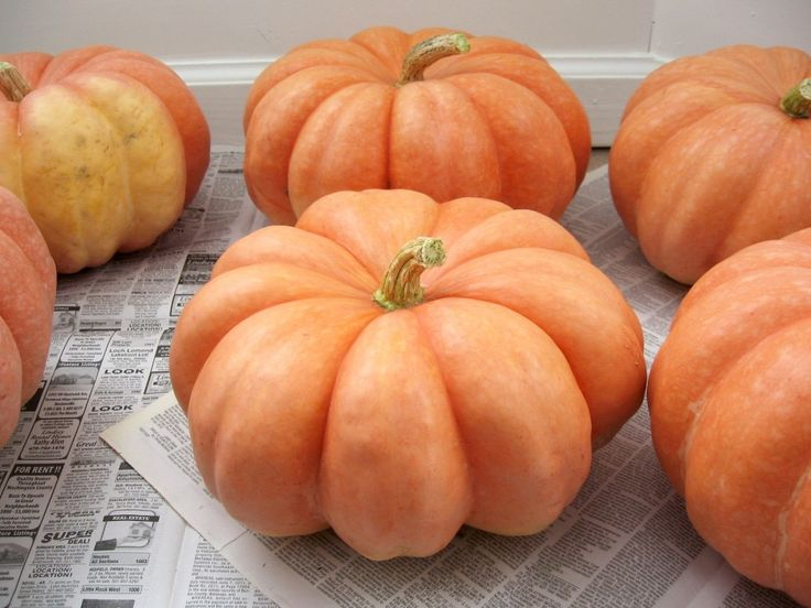 How To Preserve Pumpkins For Décor Or Storage