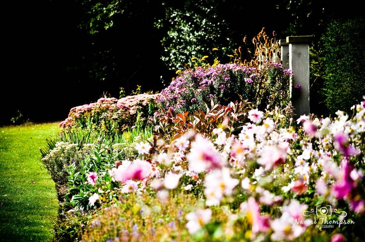 Romantic English country garden perfect for a wedding . www.naomithompsonphotography.co.uk