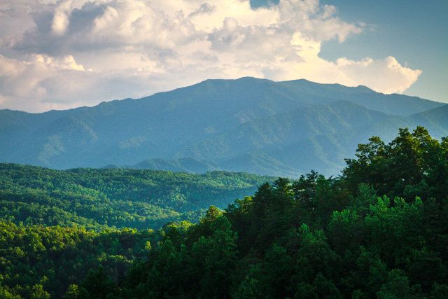 67 Best Large Cabins In The Smokies Images On Pinterest