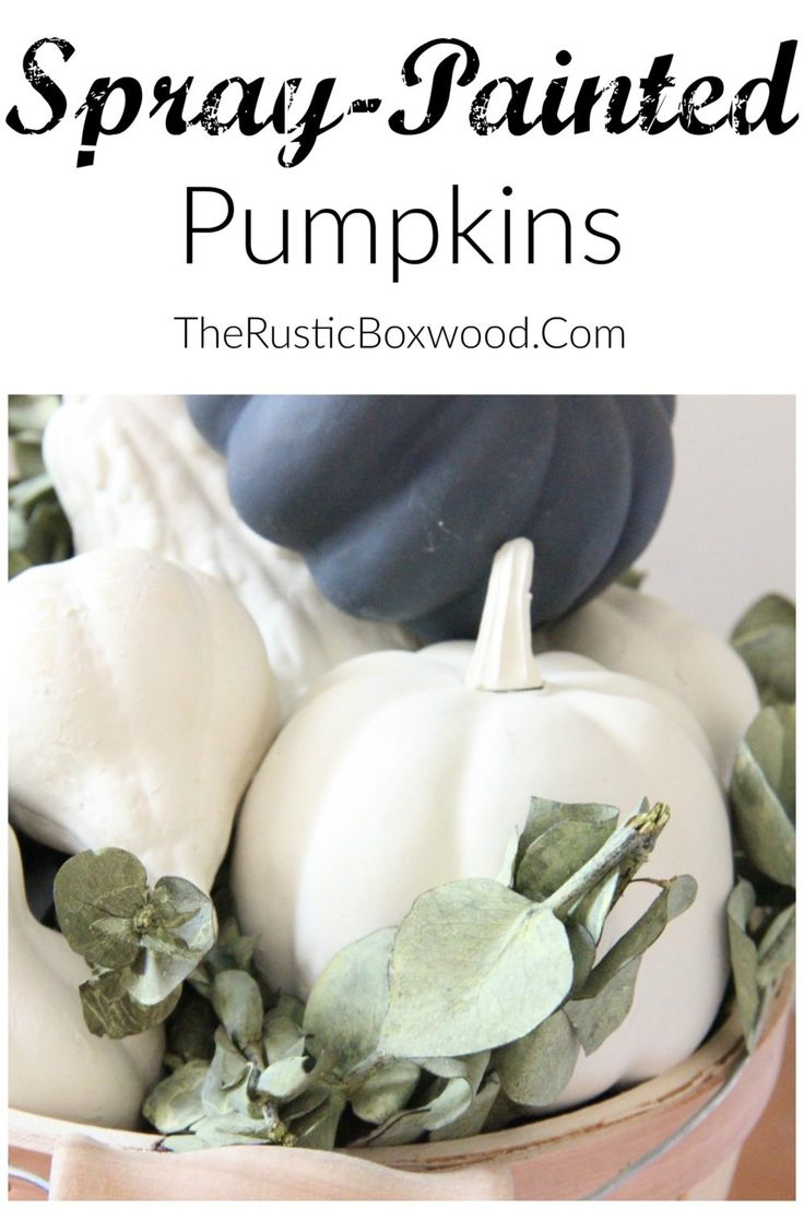 DIY Spray-Painted Pumpkins | The Rustic Boxwood | chalk paint, spray paint, diy, makeover, pumpkins, fall decor, spray painted pumpkins, farmhouse style