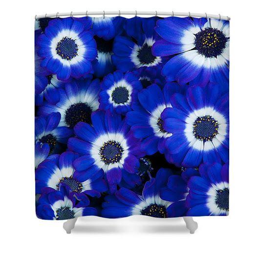 Beautiful Blue Cineraria Shower Curtain ElenaRiimFineArtPhotography #ShowerCurtain cineraria,flowers,blue,closeup,summer