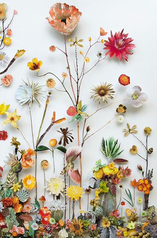 Anna Sheffield / Wildly Obsessed The magically inventive 'Flower...