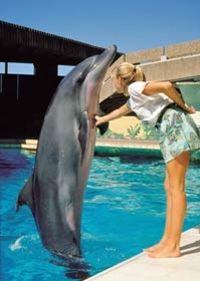 Durban City Ushaka Marine World