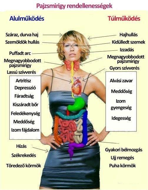 Legtöbben a pajzsmirigy rendellenességek fokozott előfordulási arányának okát a megváltozott étrendbeli és környezeti viszonyokban látják. Bármi legyen is az ok, egy biztosan állítható: egyre többen és többen szenvednek a pajzsmirigy különböző rendellenességeitől, a legnagyobb arányban a nők körében.