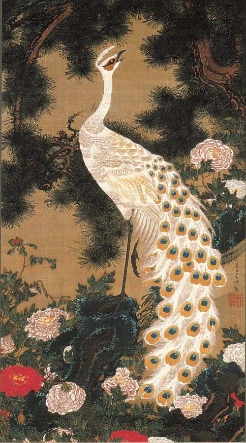 動植綵絵-09-老松孔雀図(ろうしょうくじゃくず)