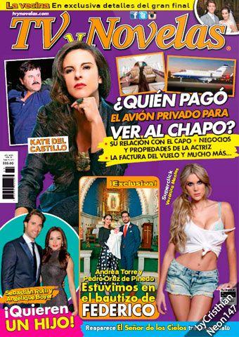 TV y Novelas México - 18 Enero 2016 - Kate del Castillo