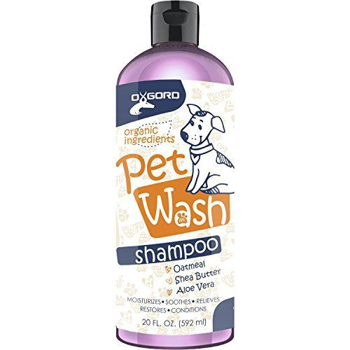 Best Puppy Shampoo Reviews - Organic, Best Smelling Pet Shampoos