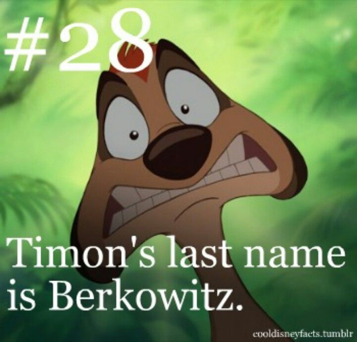 Disney fun fact. #28: Timon's last name is Berkowitz from The Lion King