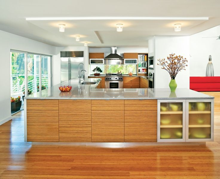 Zebra Wood Cabinets Kitchen Modern with Bamboo Flooring Ceiling Lighting