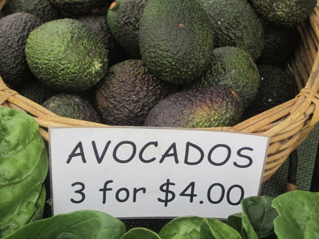 Avocado. The best food ever.