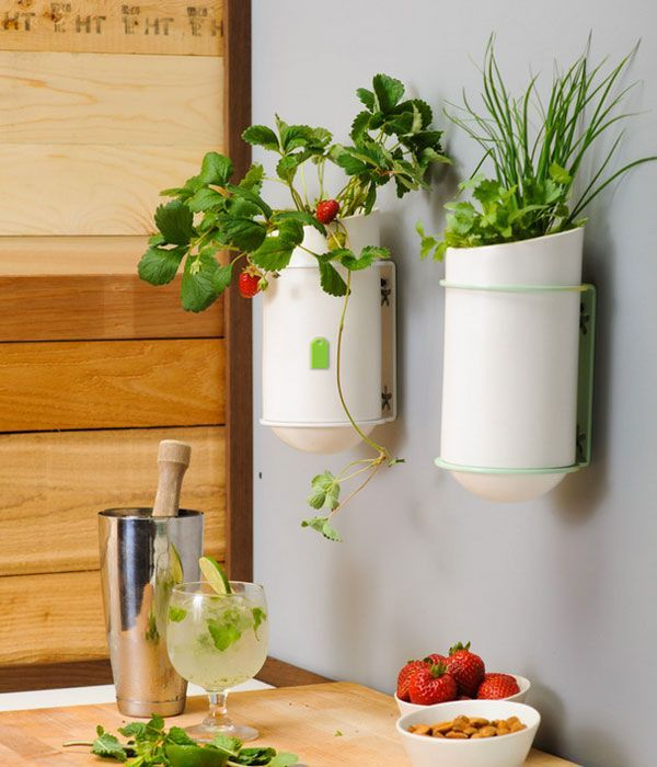 Kitchen Wall Decoration   Google Search