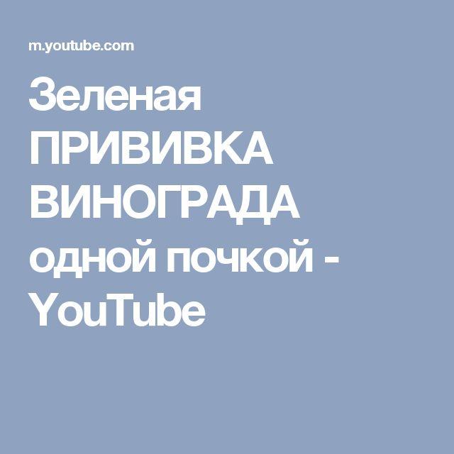Зеленая ПРИВИВКА ВИНОГРАДА одной почкой - YouTube