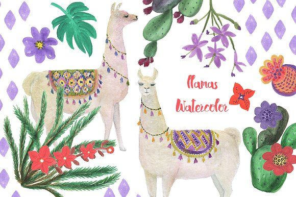 Watercolor llamas by ramika on @creativemarket