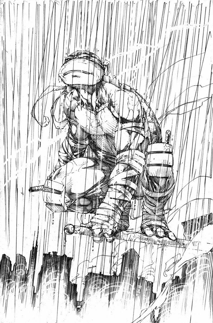a01fcd2e5415c4b10ef2685f5fc6610b--turtles-ninjas-ninja-turtle-raphael