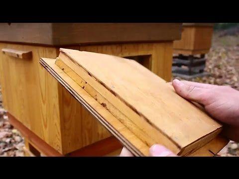 Pasieka Bzykanko - podglądanie pszczół bez otwierania ula - YouTube