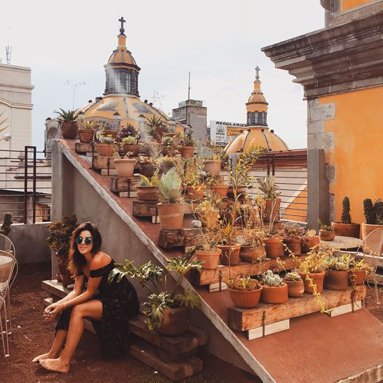 17 best images about huerto urbano vegetal on pinterest for Travel to mexico city