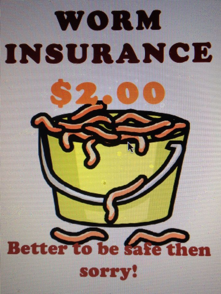 Worm Insurance Sign Jack And Jill Pinterest Signs And Worms