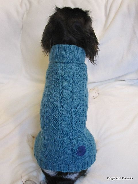 PDF Knitting Pattern Knit Dog Sweater by ButterflyKnittins ...