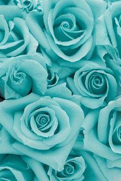 Teal flowers