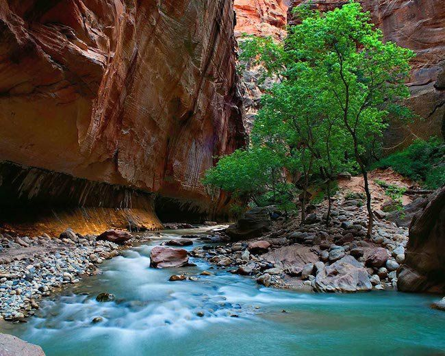"The Zion Narrows- #5 on National Geograghic's ""Best Adventures in America"". Done it. They're not wrong :):"