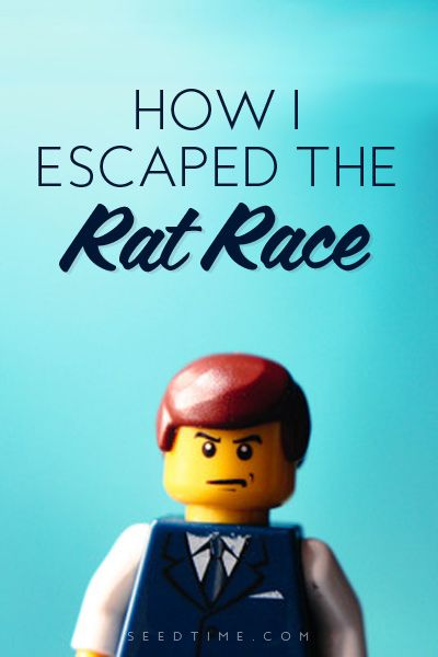 How I escaped the Rat Race