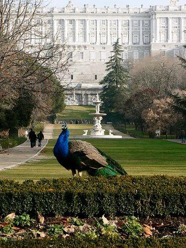 Campo del Moro Gardens, Royal Palace of Madrid, Spain