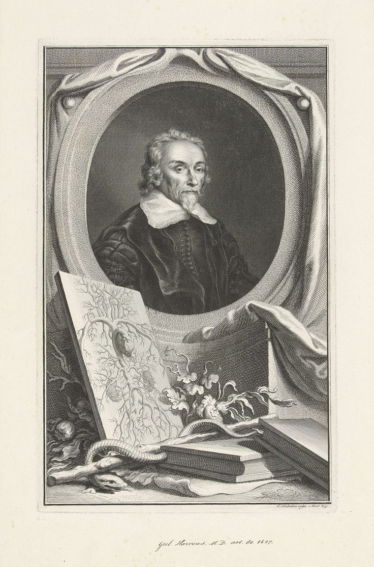 essay on william harvey The renaissance is a time period which stretches from 1500 to 1750 in this time people had a new attitude towards learning and wanted to learn for  william harvey.