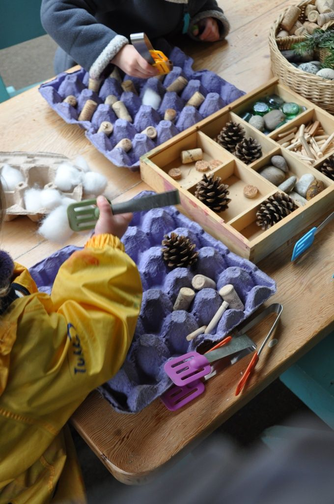 Egg cartons and natural materials used for sorting - fine motor skills