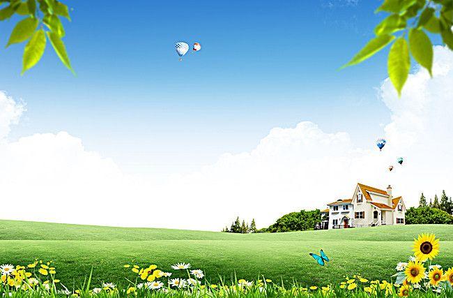 Natural Green Grass Background Sunflower Butterfly Print Green Grass Background Grass Background Plains Landscape
