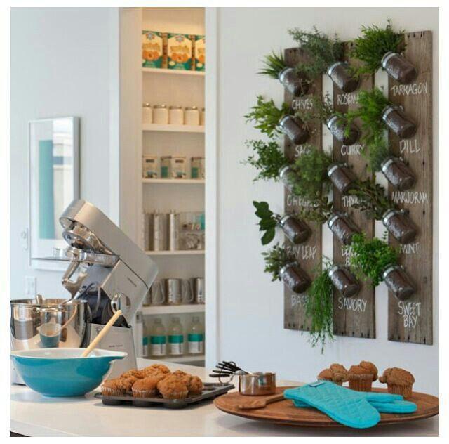 Plantas aromaticas compartido por #cosmeticoslibni productos #cosmeticos y de #limpieza