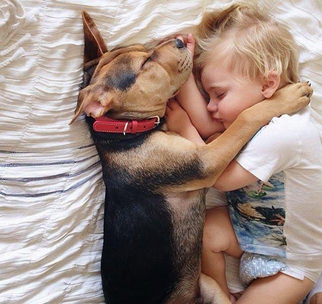 #EntérateCali: Un niño y su perro durmiendo juntos (supremamente tierno)...