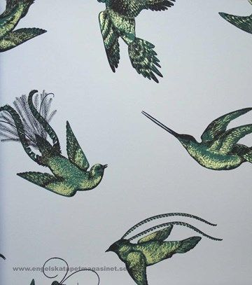 Cole & Son Tropical Birds Tapet