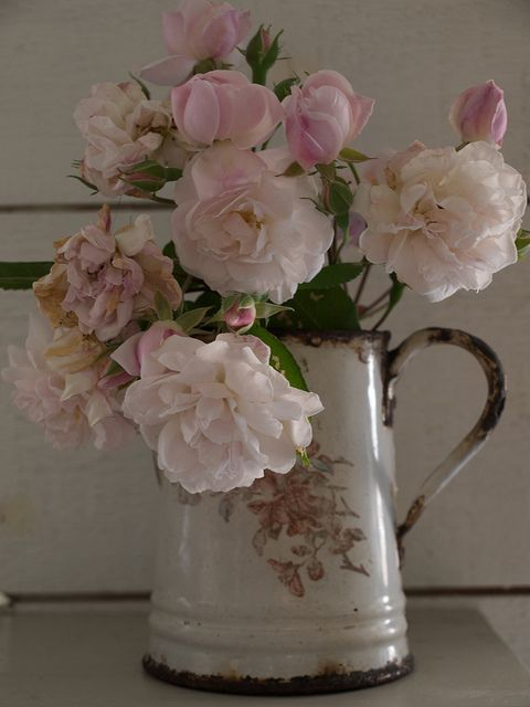 An old rose bouquet in a vintage enamel jug