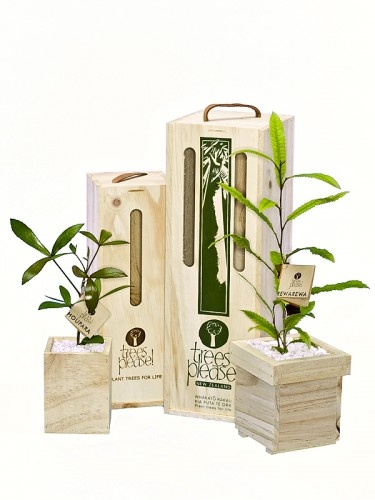 A great Corporate Gifts Idea. Also close to home – unique to NZ.  Boxes can be engraved or printed. NZ Natives, Fruit Trees, Flowering Trees and Other gift sets available.