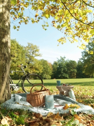#perfectpicnic #joules perfect location: anywhere with a dappled tree, blue skies and green space :)
