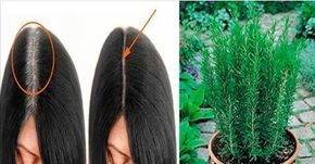 nascondere capelli grigi