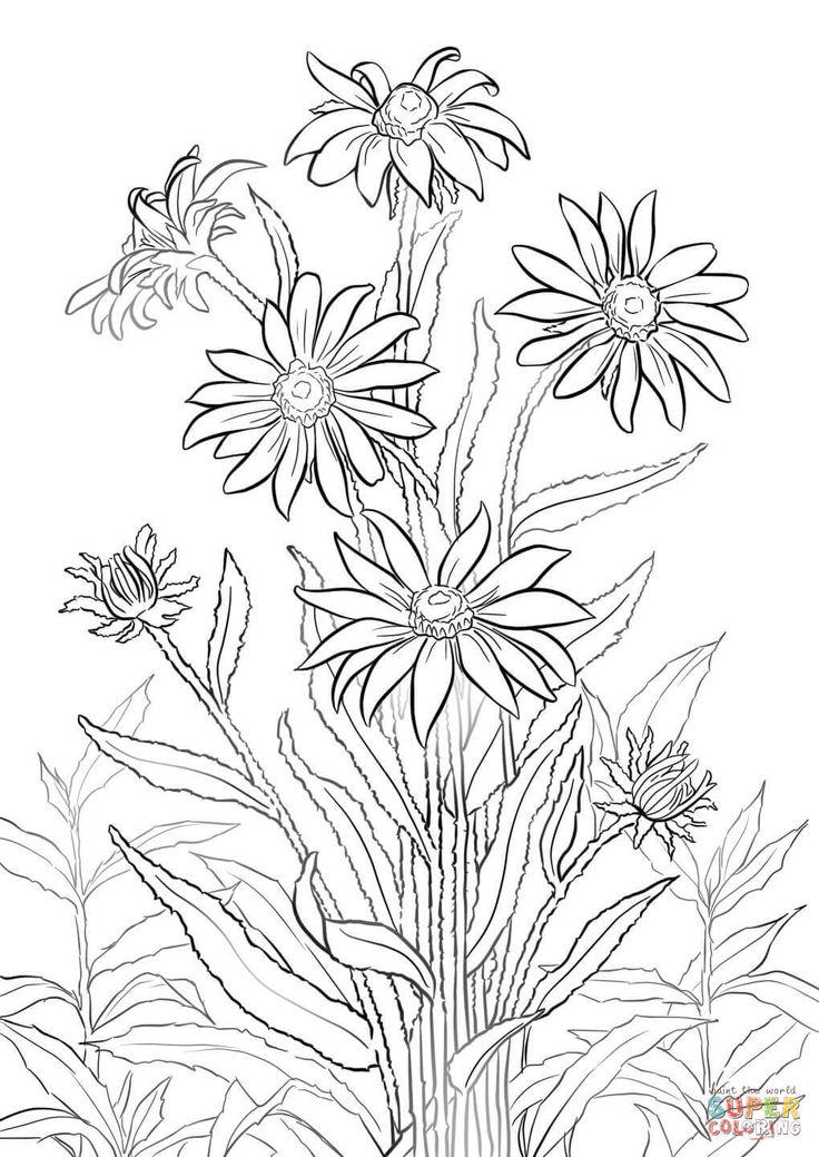1055 best Drawing Flowers Tutorials