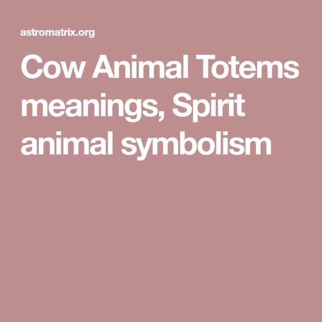 Cow Animal Totems meanings, Spirit animal symbolism