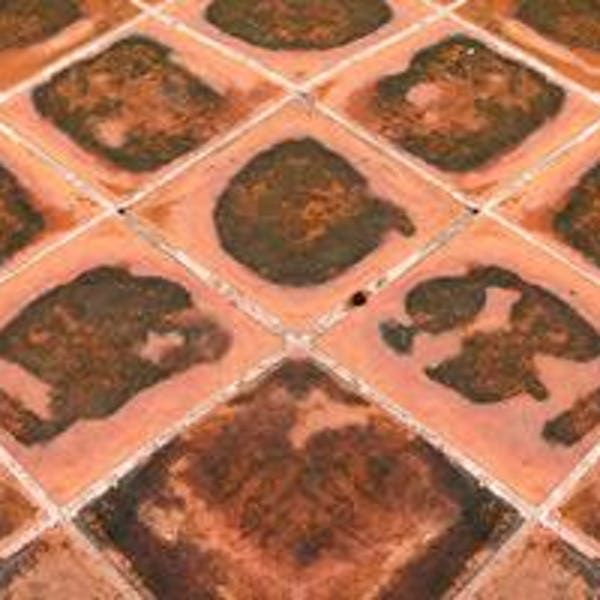 The Best Ways To Clean Tile Floors Removing Vinyl Flooring Vinyl Tile Clean Tile