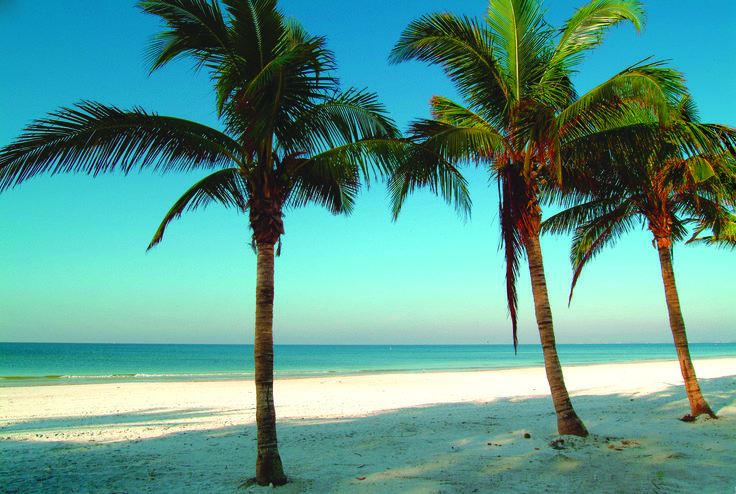 Ft. Myers Beach, Florida  -- I must find this location when we go!! :) Perfect ratio of sand, blue water, & palm trees.