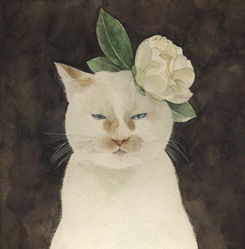 White cat artemisdreaming: 白椿 White Tsubaki Midori Yamada Artemis❤