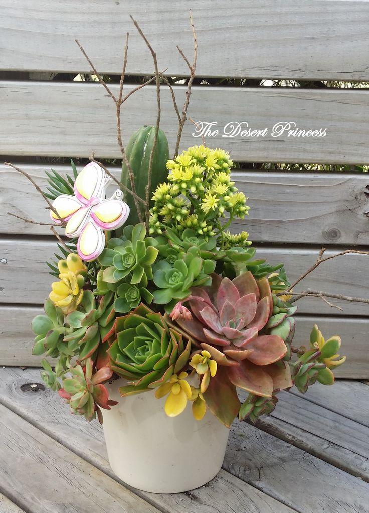 Succulent Floral Arrangement Design by The Desert Princess www.facebook.com/thedesertprincess1006