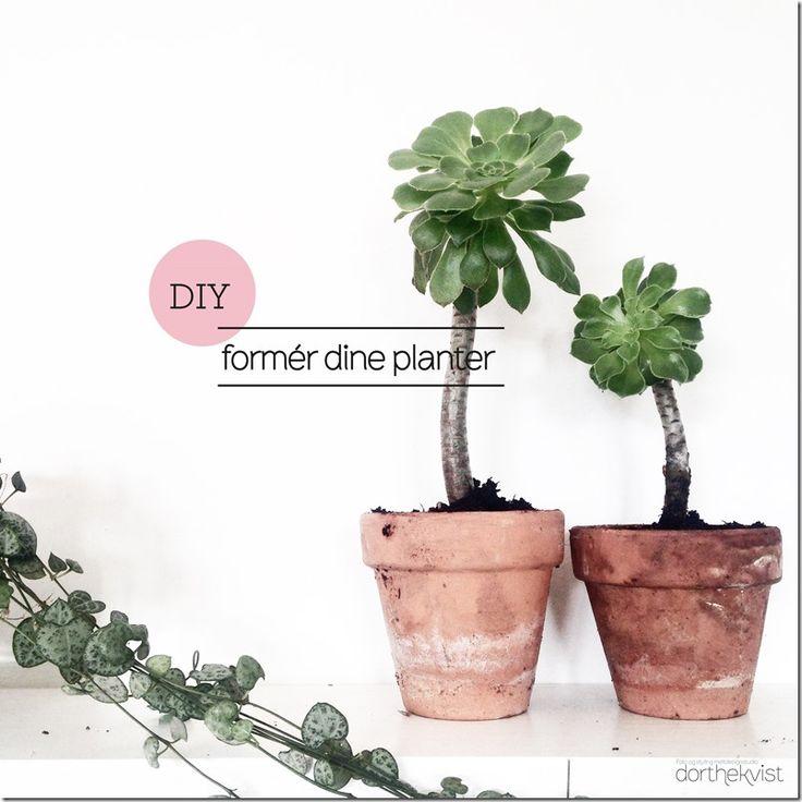 Formér dine planter ::: Botanik - MeltdesignstudioMeltdesignstudio
