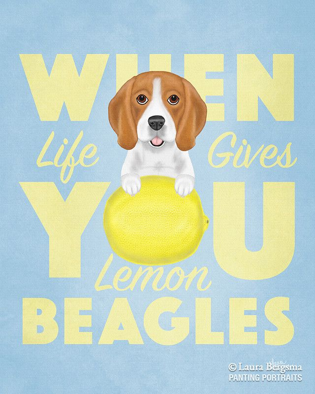 When Life Gives You Lemon Beagles By Laura Bergsma Lemon Beagle