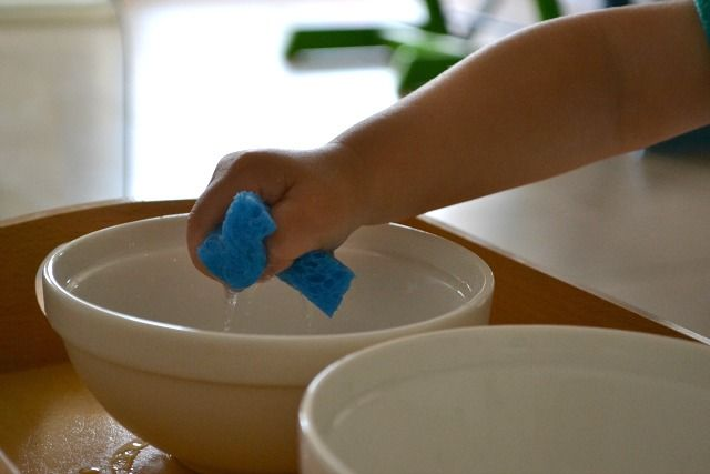 Water transfer with a sponge - practice squeezing and transferring from one bowl to another. This post also shares who to use a baster, a funnel and a pitcher with water play and fine motor skills