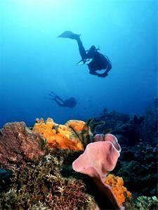 scuba diving @ Los Cobanos Beach, El Salvador