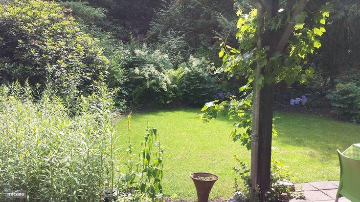 De tuin waarin u mooie vogels zult spotten.