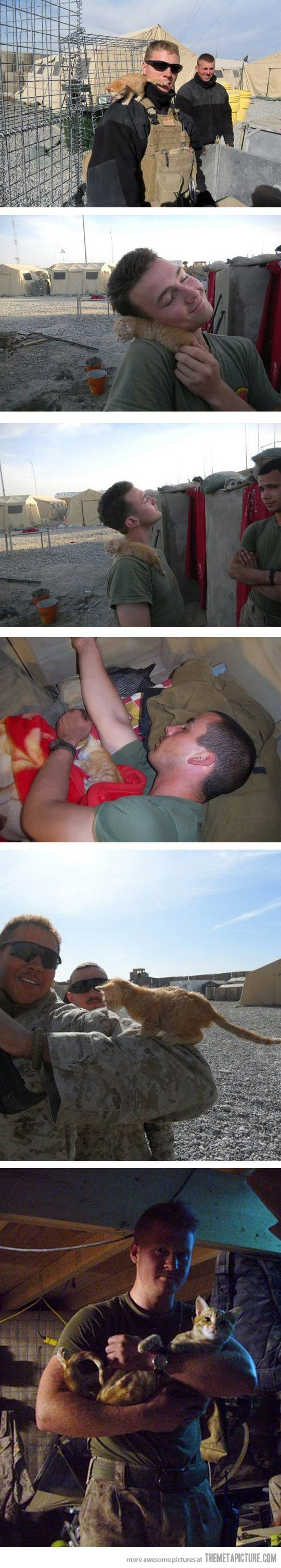 Kitty rescued by US Marine in Afghanistan. This is the sweetest thing I have ever seen